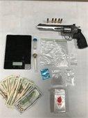 Probation Violation / Possession of Narcotics for Sales